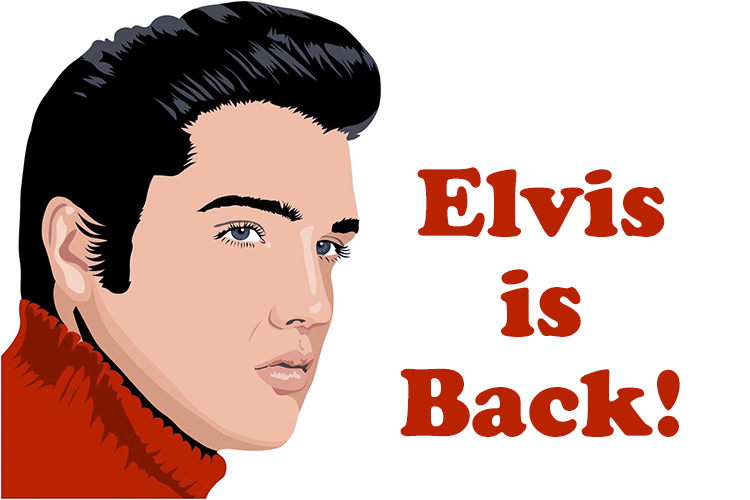 Elvis Is Back - Konsertti
